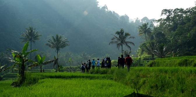 coc-gl-6-sosok-superhero-penyelamat-hutan-hutan-di-indonesia